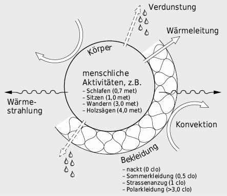 Wärmeaustausch des menschlichen Körpers mit seiner Umgebung. Hierbei gilt es zu beachten, dass die Wärme durch
