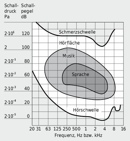 Hördynamik des normalhörenden Menschen