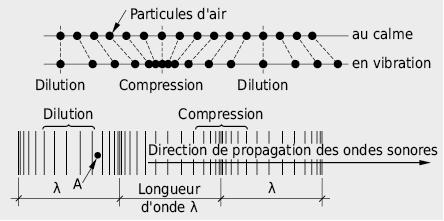 Représentation instantanée de l'état de pression dans la propagation d'une onde longitudinale: fluctuations locales de la pression acoustique
