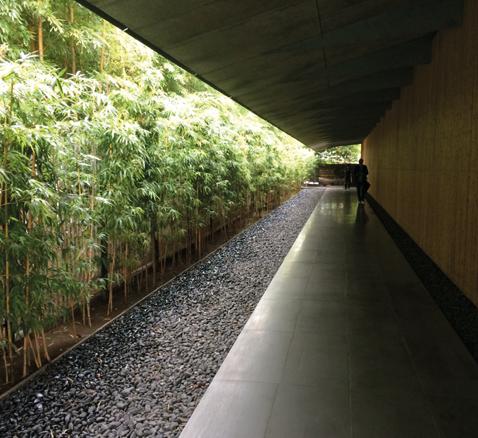 Eine nahe ans Gebäude gelegte Bambushecke vermittelt zwar zusammen mit dem riesigen Vordach tolle Raumerlebnisse, beschleunigt aber den Lichtabfall bis zur völligen Dunkelheit noch vor der Fassade.