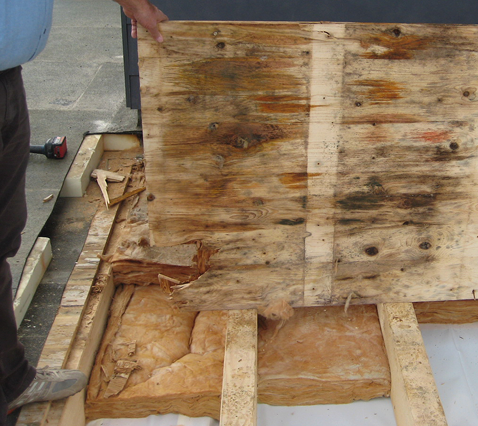Feuchte und teilweise bereits verfaulte Dreischichtplatte bei Flachdach mit zu dampfdichter Dampfbremse/Luftdichtung, Luftundichtheiten und nicht hohlraumfrei verlegter Wärmedämmung zwischen derBalkenlage.